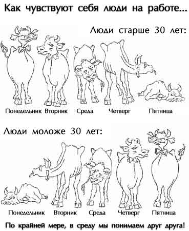 http://prikol-fun.narod.ru/c_prikol/pic/f_4xm.jpg